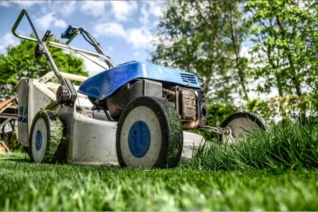 Garden Maintenance and Garden Service in Kempton Park Lawn Care