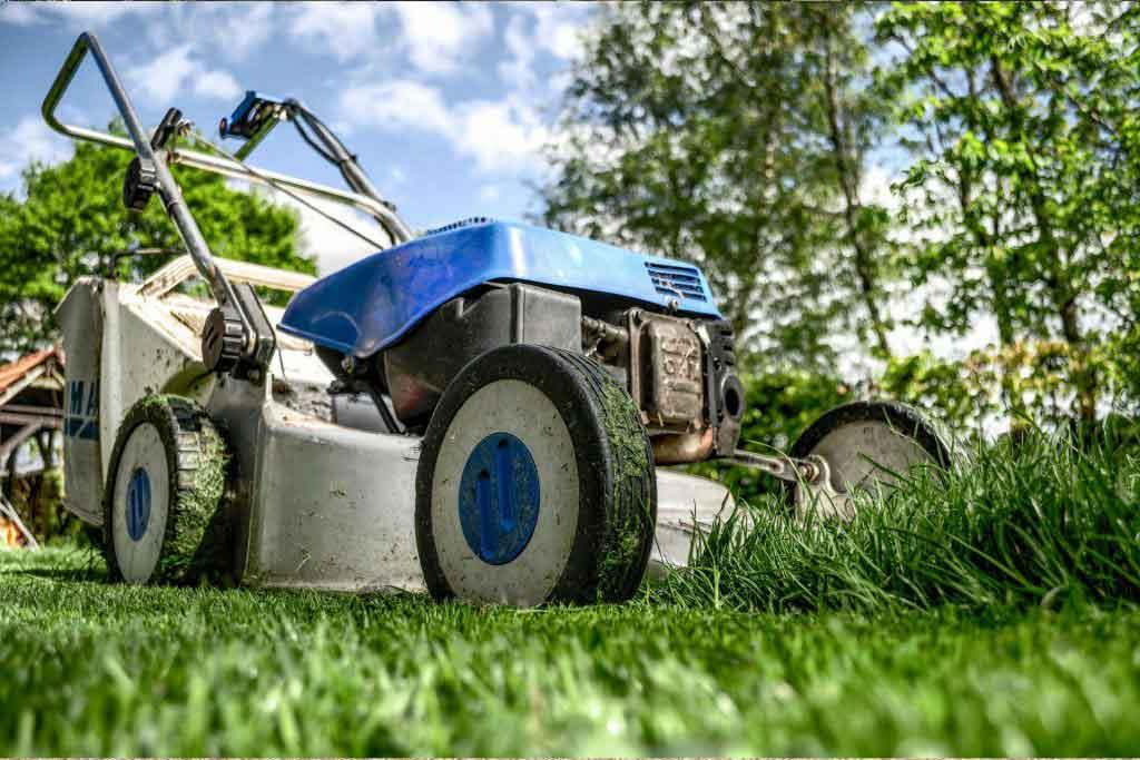 Garden Maintenance and Garden Service in Kempton Park Lawn Care