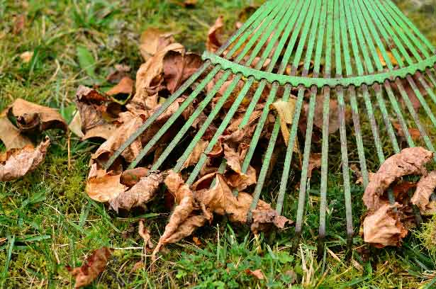 Rake for Garden Maintenance and Garden Service in Kempton Park provides Hassle Free Gardens