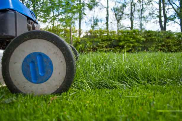 Garden Maintenance and Lawnmower for Garden Service in Kempton Park provides Hassle Free Gardens